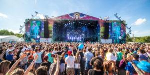 Попробуйте «Дикую Мяту» на вкус: летний фестиваль музыки и свободы!