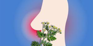 Альтернативные методы лечения при раке молочной железы могут принести больше вреда, чем пользы